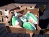 houston-20121121-00087-800x600